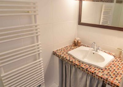 Bathroom with shower (level 2)